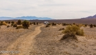Mesquite Falls Sand Dunes 24