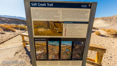 Salt Creek Interpretive Trail 1