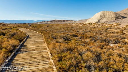 Salt Creek Interpretive Trail 12