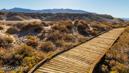 Salt Creek Interpretive Trail 13