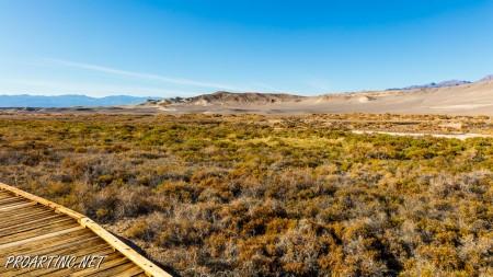 Salt Creek Interpretive Trail 16