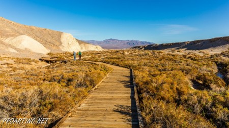 Salt Creek Interpretive Trail 20