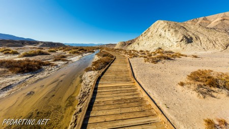 Salt Creek Interpretive Trail 8