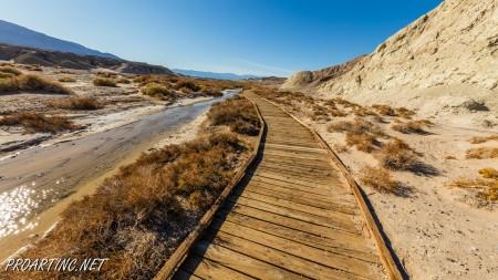 Salt Creek Interpretive Trail 9
