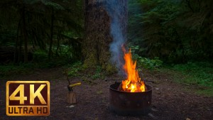 Campfire Relaxation Video in 4K