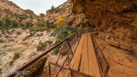 Canyon Overlook 29
