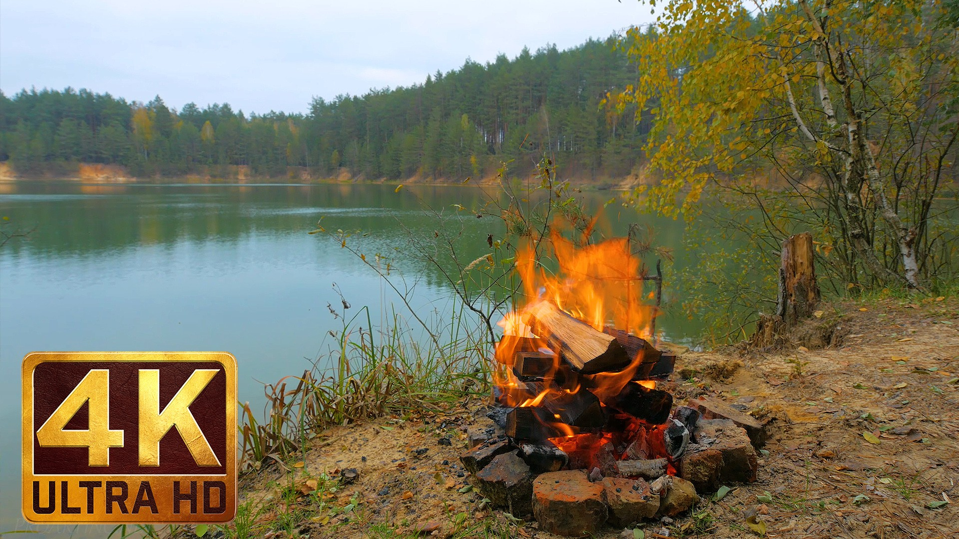 4k relaxation footage u2013 autumn flames in 4k with crackling fire