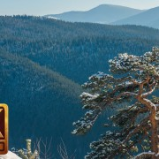 4K Nature Relaxation Video - Winter in the Carpathians