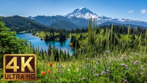 4K Nature Photo Collection of Washington State