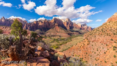 The Watchman Trail 15