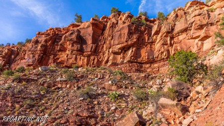 The Watchman Trail 29