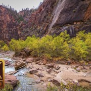 4K Nature Photography - Zion National Park