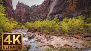 4K Nature Photography - Zion National Park