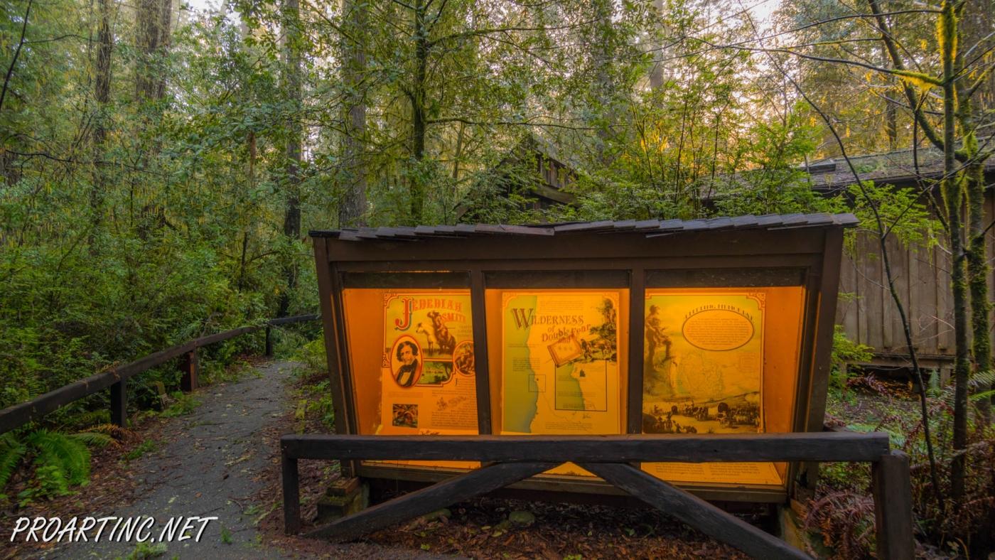 Jedediah Smith Redwoods State Park Campground Proartinc