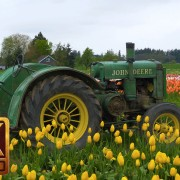 Wooden Shoe Tulip Festival. Part 1 - 4K Nature Relax Video