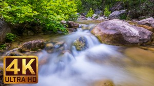 Clear Mountain Stream - 4K Relax VIDEO