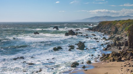 Sonoma Coast State Park 19