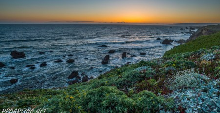Sonoma Coast State Park 27