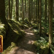 MIDDLE FORK TRAIL, Snoqualmie region 1 YOUTUBE