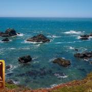 Sonoma coast state park, California 1 y