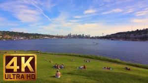View from Gas Works