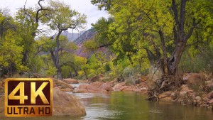 Virgin River-2