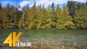 Skagit River-1