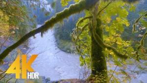 Autumn River. Episode 2