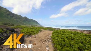 Kaena Point Trail, Oahu, Hawaii virtual walk 1 Hour