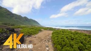 Kaena Point Trail, Oahu, Hawaii virtual walk 1 Hour