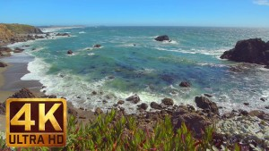Sonoma coast state park, California Episode 4