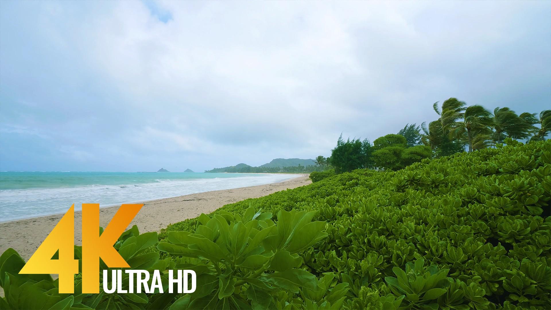 oahu beach 1