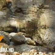 underthewater 2
