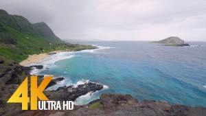 OAHU BEACHES EPISODE 3
