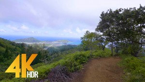 KULIOUOU RIDGE TRAIL, HAWAII