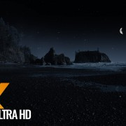 Ruby Beach at night
