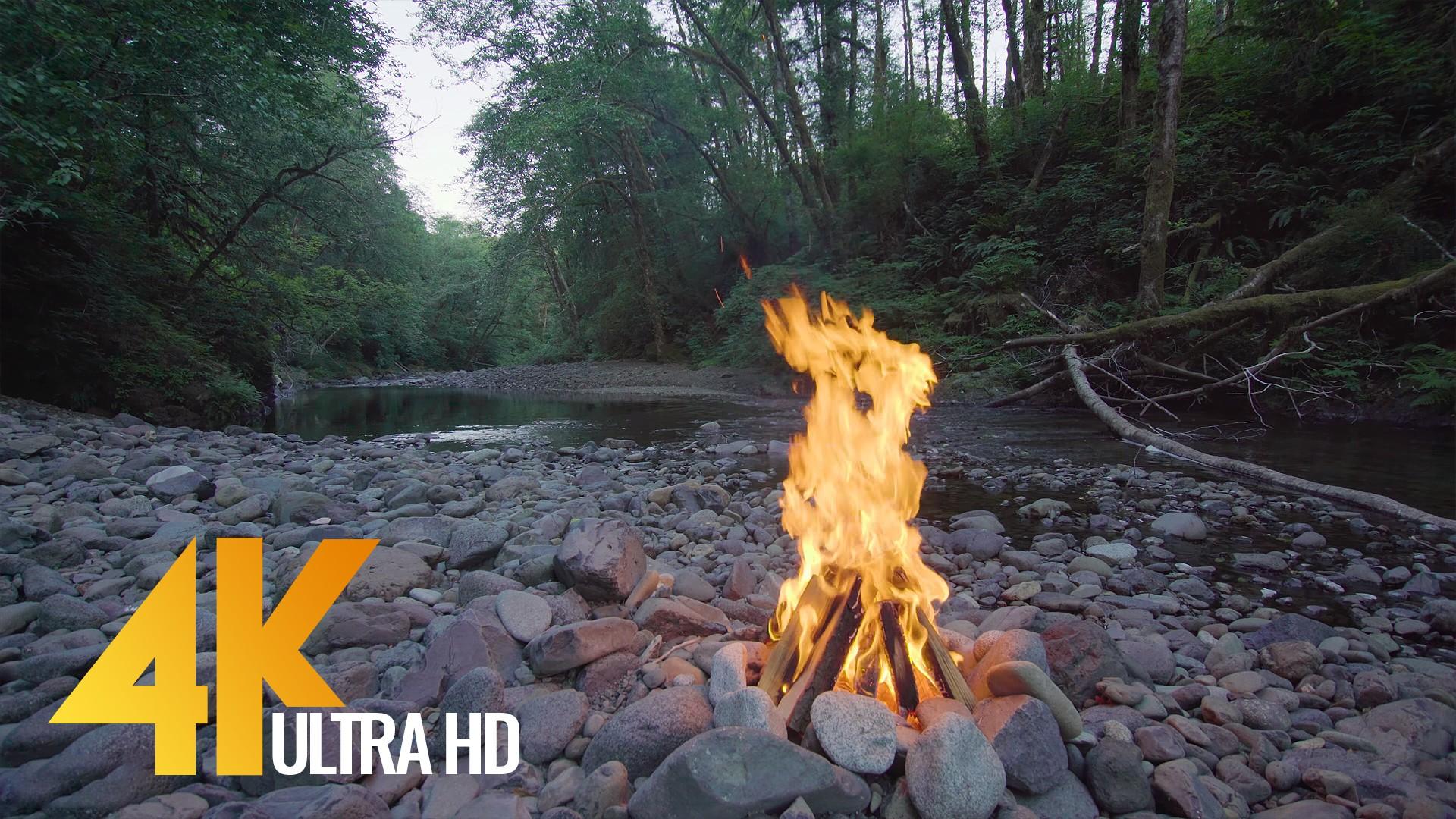 4K Relax Video Campfire Near The River Episode 1 3 HRS