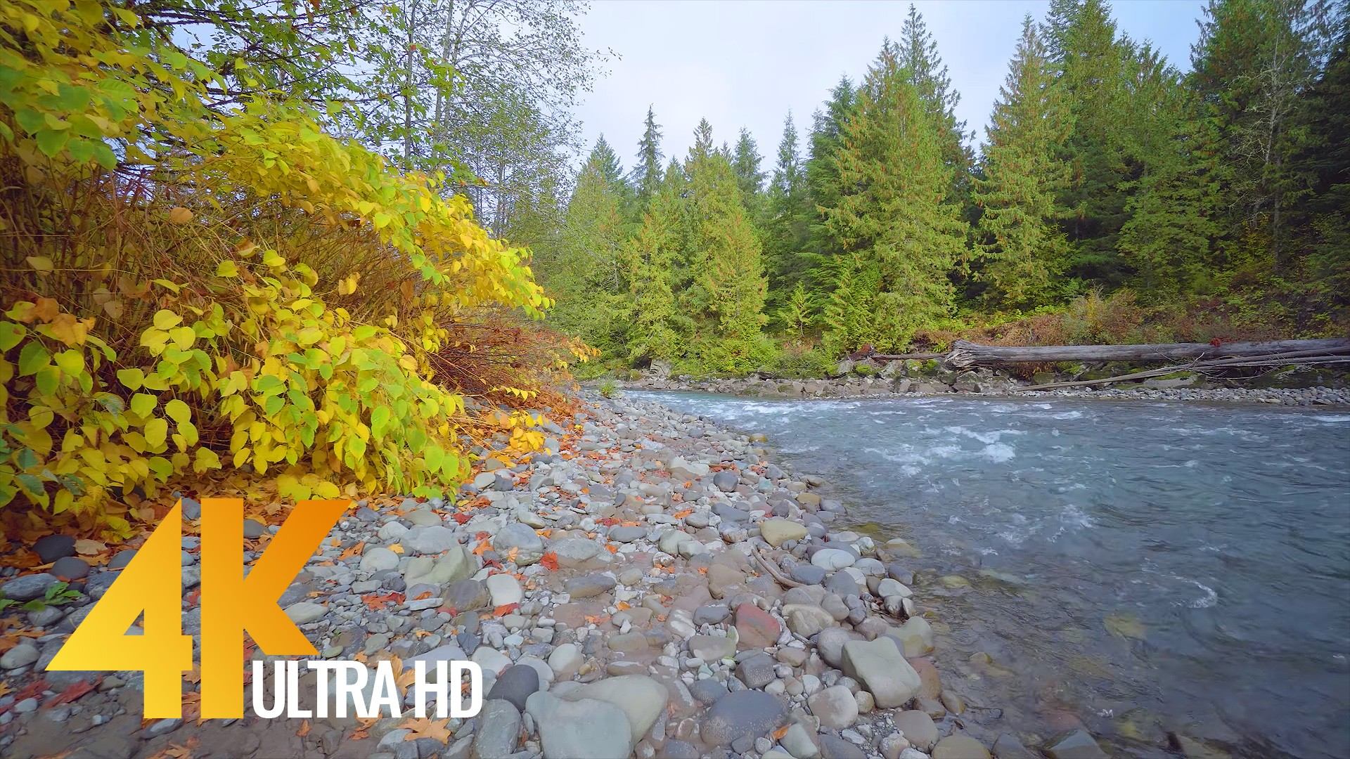 Nooksack River, Mount Baker area, Washington
