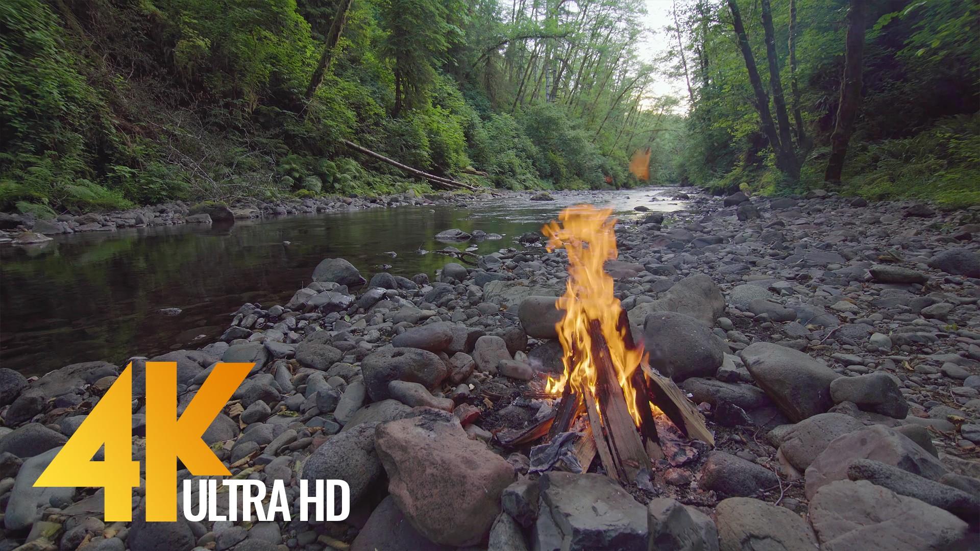 Campfire near the river 2
