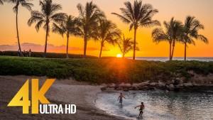 HAWAII FILM 2