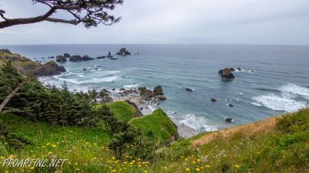 Crescent beach trail 12