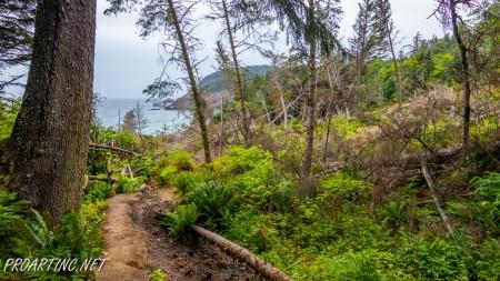 Crescent beach trail 9