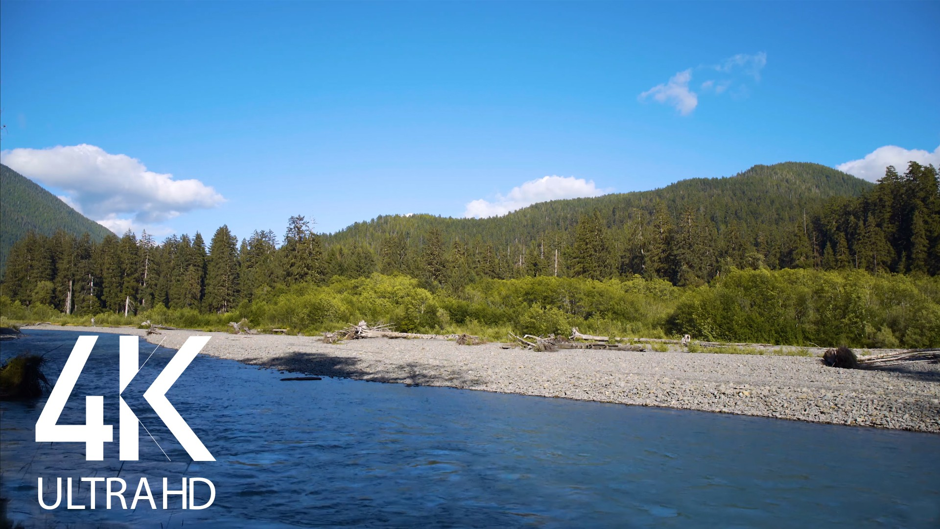 Hoh River Soundscape