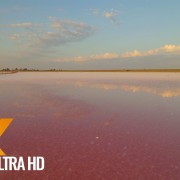 Pink Lake, Ukraine