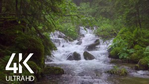 Carpathian's Water, Ukraine. Part 2