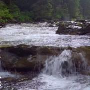 Carpathian's Water, Ukraine.Part 1
