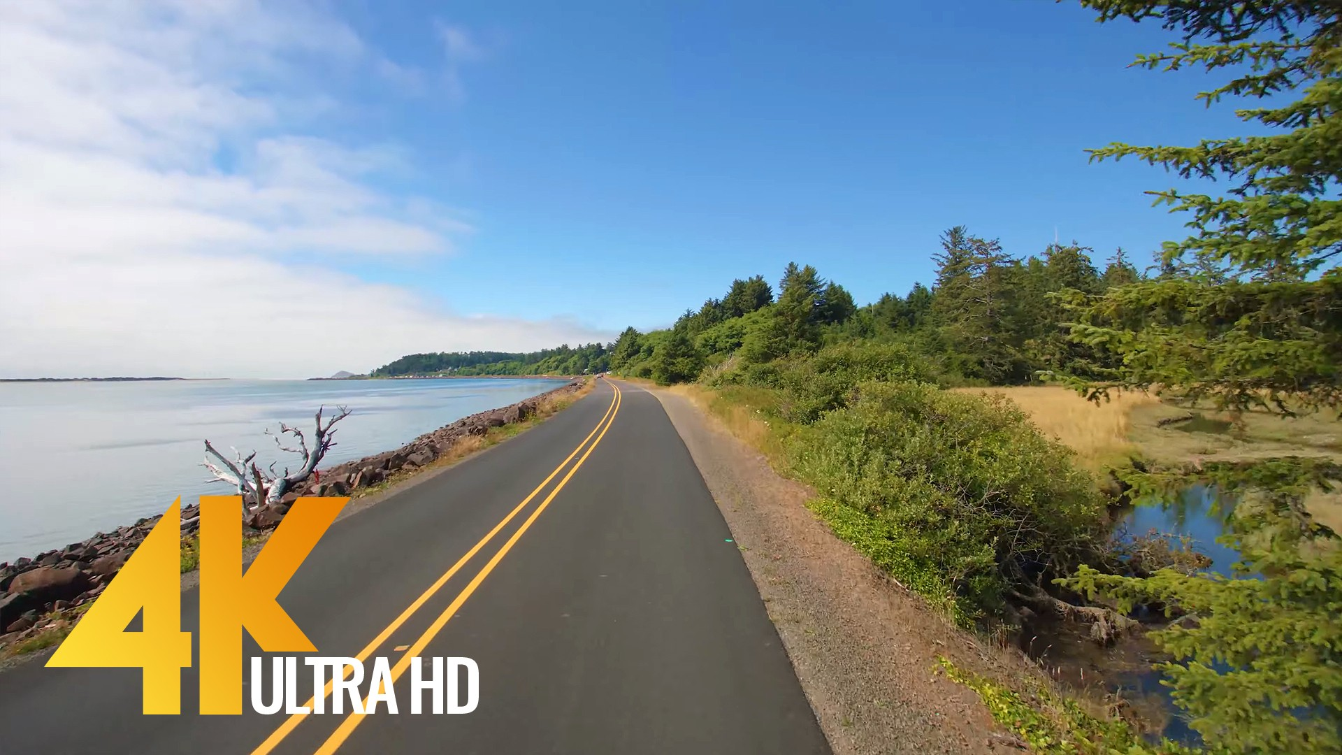 Drive 4K 60fps – Oregon, Cape Lookout Road, USA