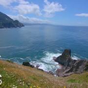 Calming Ocean Waves Soundscape