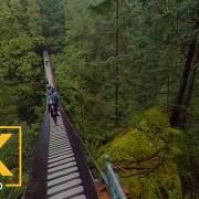 Lynn Creek Canyon_360 5K