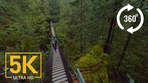 Lynn Creek Canyon_360 5K